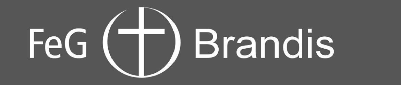 cropped-00-FeG-Brandis-negativ-1-1.jpg